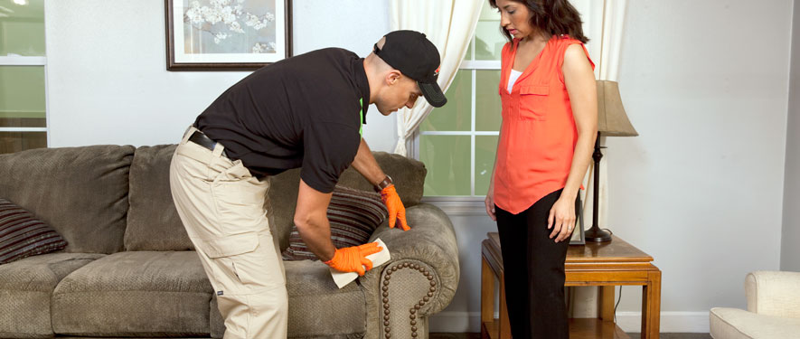 Franklin, MA carpet upholstery cleaning