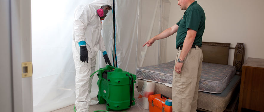 Franklin, MA mold removal process